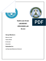 dld open ended lab report