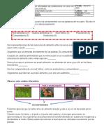 Ficha alteraciones en un ecosistema 4grado