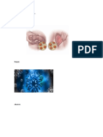 Virus del papilomo humano 1