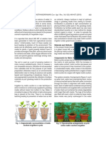 Standardization_of_Growbag_Media_with_Nutriseed_2