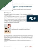 presupuestos_metodologicos_principio_regla_subprincipio_excepcion_y_meta_regla-5ee27eb6542a3