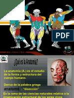 Presentación Clase 4 anatomía sistema oseo.pptx