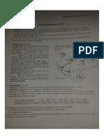 Examen RES + Corr (ISIL, Janvier 2014)