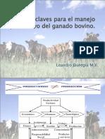 Aspectos claves para el manejo productivo del ganado
