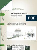 VEGETACION Y MEDIO AMBIENTE