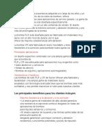 Catalogo español Sulzer