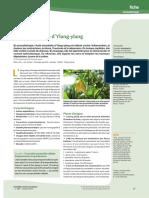 article HE de YLANG YLANG ANNEE 2019.pdf
