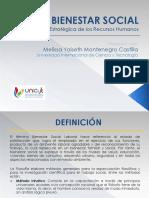 EL BIENESTAR SOCIAL.pdf