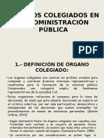315505294-Organos-Colegiados-en-La-Administracion-Publica