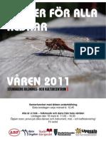 Studieförbundens program vt2011