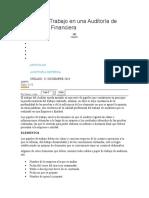 Papeles de Trabajo en una Auditoría de Información Financiera