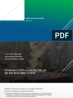 225252653-Introduction-to-Microcasting-Techniques-for-MicroManufacturing-convertido ES