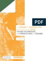 3_sesame_web.pdf