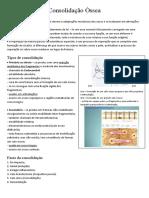 consolidação óssea.docx