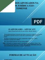 O PAPEL DOS ADVOGADOS NA ORDEM JURÍDICA SÃO - TOMENSE
