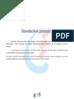 rappot de stage 2019 JRIDI AFIFA .pdf
