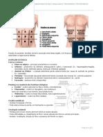 EXAME FÍSICO - ABDOMINAL.pdf