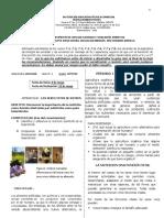 Guía Nutrición - Grados 7°.pdf