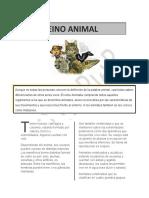 DOCUMENTO PARA ENTREGAR.docx