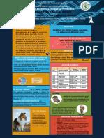 Poster de Electivo Epilepsia canina Genes.pdf