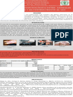 VEV.pdf