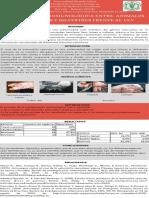 VEV (1).pdf