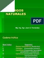 ENEMIGOS NATURALES. Mg. Ing. Agr. Juan A. Fernández