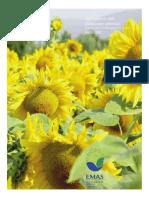 070417-Agg_Dichiarazione_Ambientale.pdf