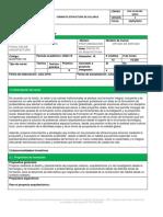 010_1732_Opción de énfasis_23072020