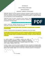 GUIA  ONCE HABILIDAD 1 QUIMICA DEL CARBONO.pdf