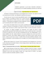 Correção - Luiz & VP.docx