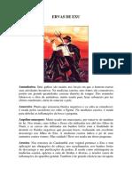 ERVAS DE EXU.pdf