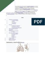 Los-pulmonies