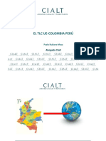 CIALT_libre_comercio diapos.pdf