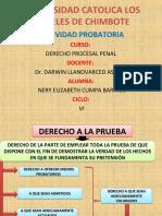 ACTIVIDAD-PROBATORIA