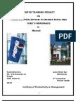 22356641-Compartive-Study-on-Pepsi-Coke