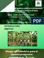 Plan de Manejo Agroclimático Integrado del Sistema productivo_ plátano (1).pdf