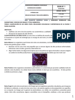cien y éti p3t01.pdf