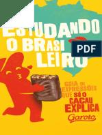 E-book Garoto 'Estudando o brasileiro'