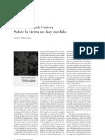 La escritura de Salvador Gallardo Cabrera por Andrés Téllez