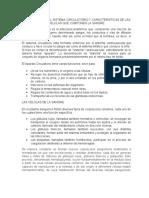 COMPONENTES DEL SISTEMA CIRCULATORIO Y CARACTERISTICAS DE LAS CELULAS QUE COMPONEN LA SANGRE