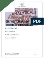 Assignment- Jurisprudence