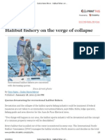 Sooke News Mirror - Halibut Fishery on the Verge of Collapse