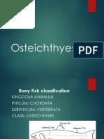 osteichthyes.pdf