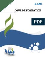 CATALOGUE DE FORMATION GROUPE CIS-SMI.pdf