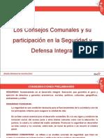 Consejos Comunales y Seguridad y Defensa