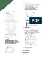 Análisis de modelos ODP