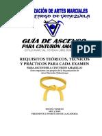 GUIA DOKENTAEGO CINTURON AMARILLO