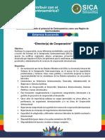 Director(a) de Cooperacion.pdf