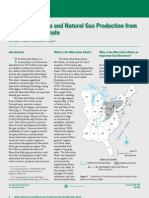 Water Resources and Natural Gas Production from the Marcellus Shale